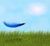 перо в поле — Стоковое фото