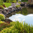 Pond — Stock Photo #9044103