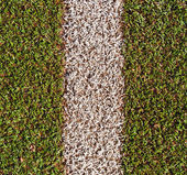 Artificial grass — Fotografia Stock