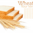 Wheat product and ears — Stock Photo