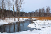 River in snow — Stock Photo