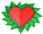 Heart with green leaves — Stock Vector