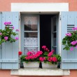 Window box flower arrangement, Burgundy, France - Lizenzfreies Foto