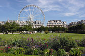 Ferris wheel at Jardin de Tuileries in Paris, France — Stock Photo