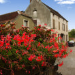 Part of the street with flowers in the foreground, Burgundy, Fra - Stock Photo