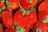 Fresh Ripe Perfect Strawberries Full Frame Background — Stock Photo