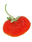 Fresh Isolated Strawberry (Heart Shaped) — Stock Photo