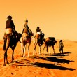 Camel Caravan in the Sahara Desert — Stock Photo #8394542