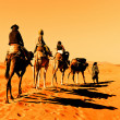 Camel Caravan in the Sahara Desert - Stock Photo