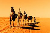 Camel Caravan in the Sahara Desert — Stock Photo