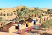 Camp in desert — Stock Photo