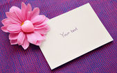 Empty card with a pink flower of a chrysanthemum and heart — Stock Photo