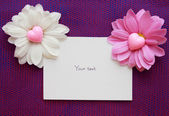 Empty card for records with two chrysanthemums and hearts — Stock Photo