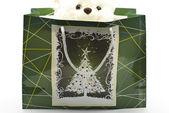 Bear in Gift Box — Stock Photo