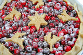 Cranberry tart. isoliert. — Stockfoto