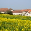 Ile de France, an old farm in Ecquevilly near Les Mureaux - Lizenzfreies Foto
