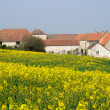 Ile de France, an old farm in Ecquevilly near Les Mureaux - Stock Photo