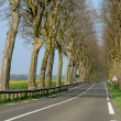 A country road in Val d Oise — 图库照片
