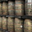 Rum barrels — Stock Photo