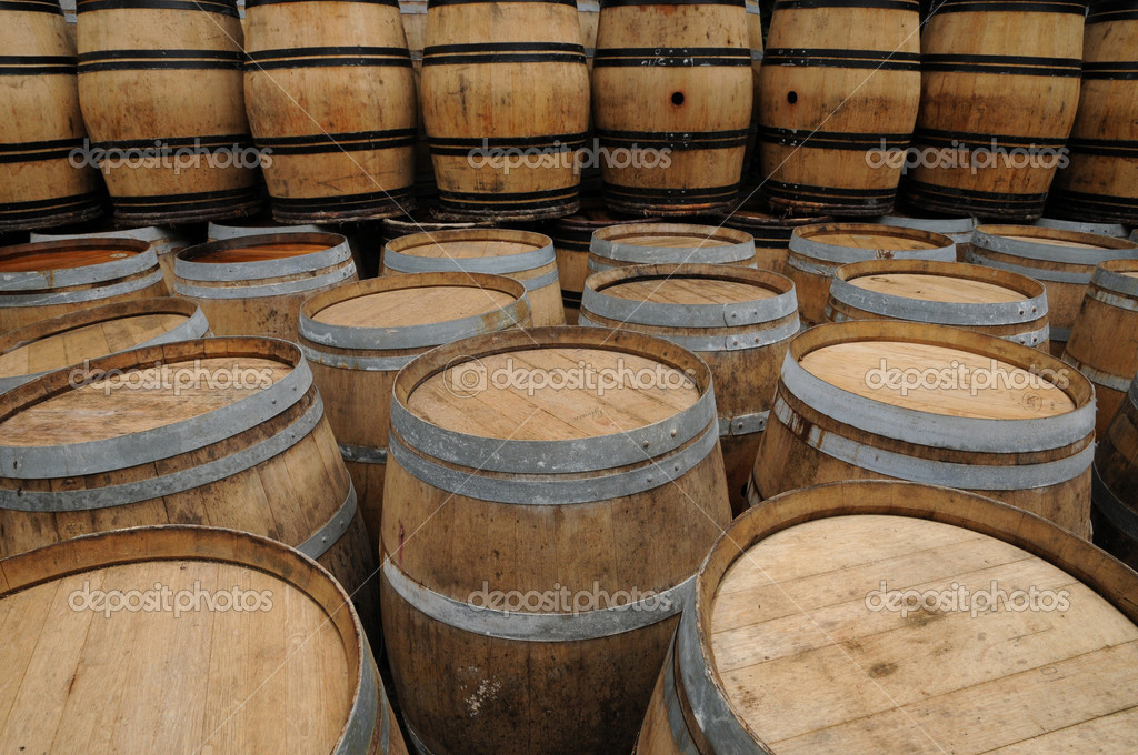 France, barrels of Bordeaux wine  Stock Photo #8236974