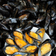 Mussel — Stock Photo #8249596
