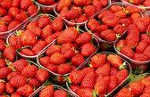 Strawberry — Foto de Stock