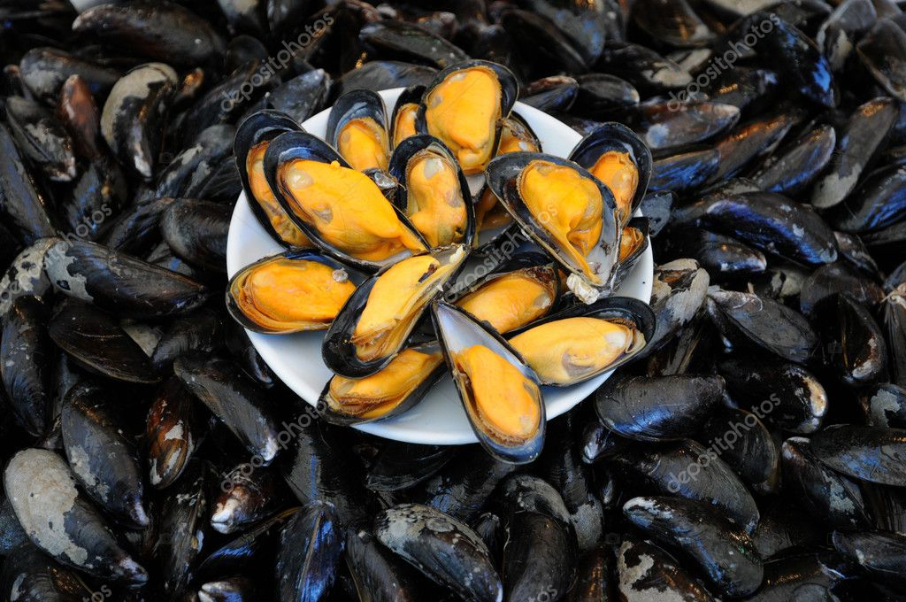 Blue mussels at the fish merchant in Normandy — Stock Photo #8249603