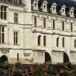 Castle of Chenonceau - 