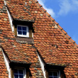Stock Photo: Tiles on a roof