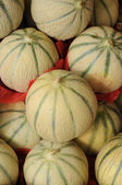 Muskmelon — Stock Photo