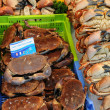 Crabs on the market in Normandy — Stock Photo