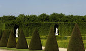 The park of Versailles Palace — Stock Photo