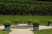 法国 villandry castel 正式的花园 — 图库照片
