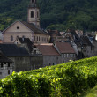 France, vineyard of Riquewihr in Alsace — Stockfoto