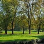 Park Jean-Jacques Rousseau in Ermenonville — Stock Photo #9266593