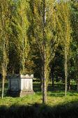 Park Jean-Jacques Rousseau in Ermenonville — Stock Photo