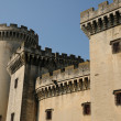 France, medieval castel of Tarascon in Provence - Foto Stock