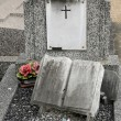 France, old tomb in Les Mureaux cemetary -  