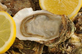Close up of a oysters and lemon — Stock Photo