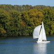 Stock Photo: France, Les Mureaux, sailing boat on Seine river