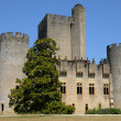 France, the medieval castle of Roquetaillade in Gironde — 图库照片
