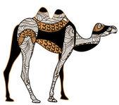 Ethnic camel — Stock Vector