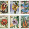 Set of stamps with flowers — Photo #8259321