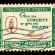 American post stamp — Stock Photo #8273060