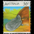Stock Photo: Australipost stamp