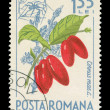 Romanian post stamp — Stock Photo