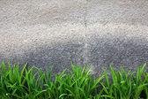 Zielona trawa na szarej ścianie — Zdjęcie stockowe