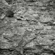 Old cement wall texture — Stock Photo #8571355