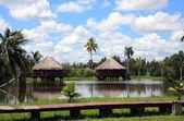 Guama lake in cuba II — Stock Photo