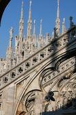 Duomo IV (detail) — Stock Photo
